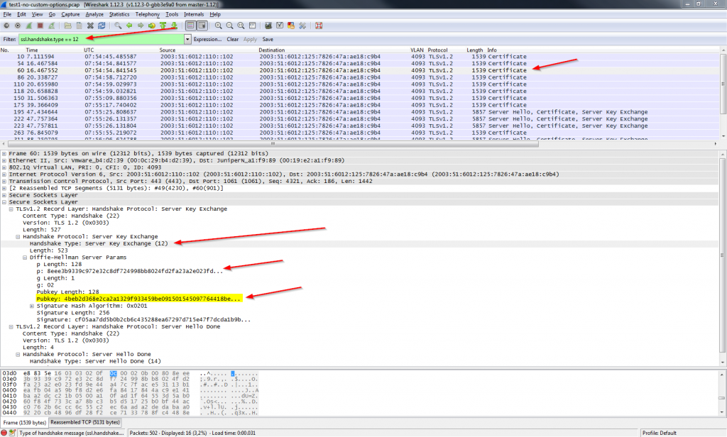 Wireshark - Server Key Exchange